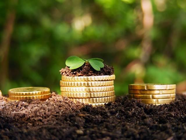 Стоимость земельных участков в Ленинградской области может отличаться на сотни тысяч рублей